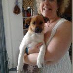On Puppies and Men, Training, Training Training